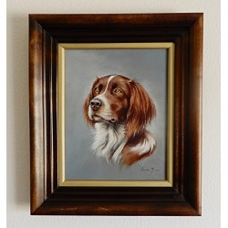 Oil Painting By Jozsef Csiszar - English Springer Spaniel Portrait